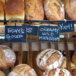 best-bakeries-and-delis-in-aventura-florida-shopping-guide