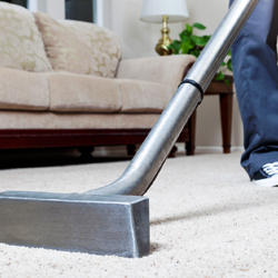 best-carpet-cleaning-services-in-aventura-florida-shopping-guide