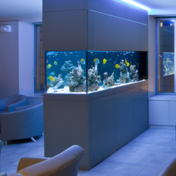 top-custom-fish-tanks-sales-and-services-in-aventura-florida-shopping-guide