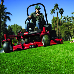 best-landscaping-services-in-aventura-florida-shopping-guide