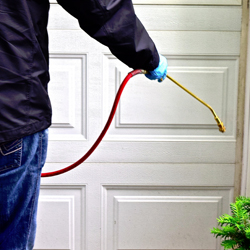 best-pest-control-services-in-aventura-florida-shopping-guide