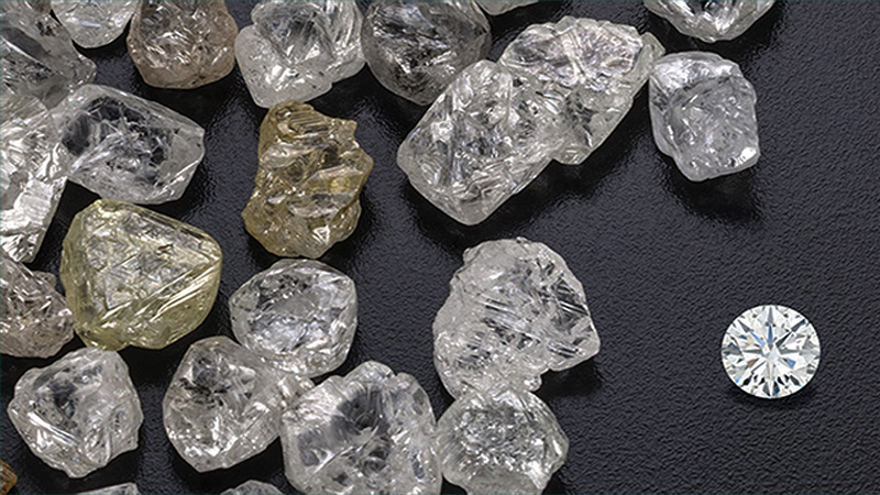 diamond-fun-facts-florida-shopping-guide